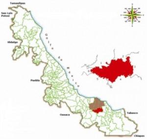 Mapa del estado de Veracruz donde se puede observar el Municipio de Hueyapan de Ocampo.